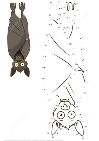 Bat Hanging Upside Down Dot To Dot