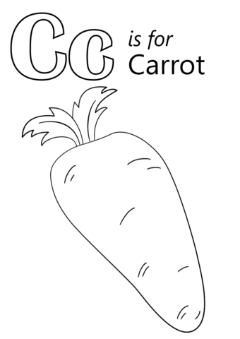 Diagram Of A Carrot Diagram Of A Squash Wiring Diagram