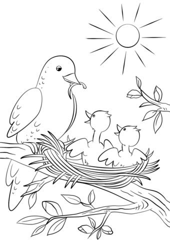 Dibujo de Madre ave alimenta polluelos para colorear