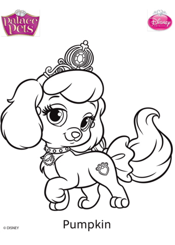Palace Pets Pumpkin Coloring Page Free Printable