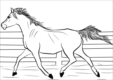 Horses Coloring Pages Free Coloring Pages