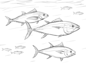 Atlantic Salmon Coloring Page Sketch Coloring Page