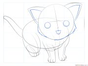 draw anime cat step