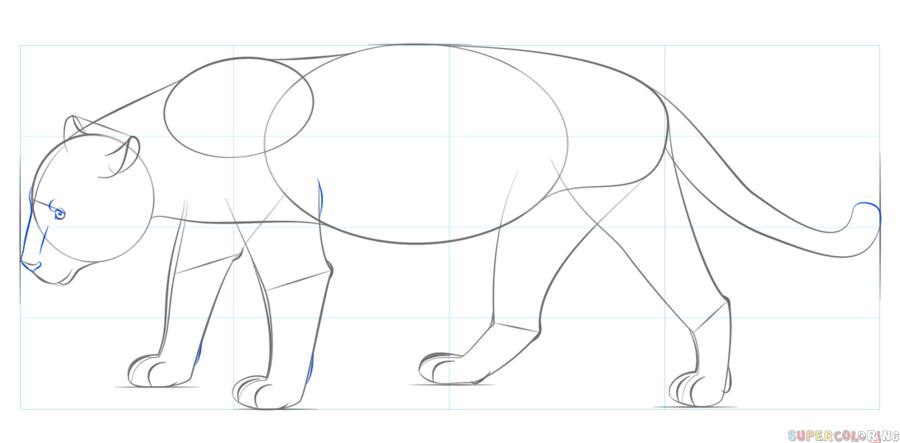 Jaguar Step By Step Coloring Pages