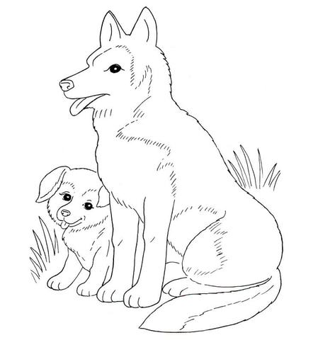 Husky Puppies Coloring Pages