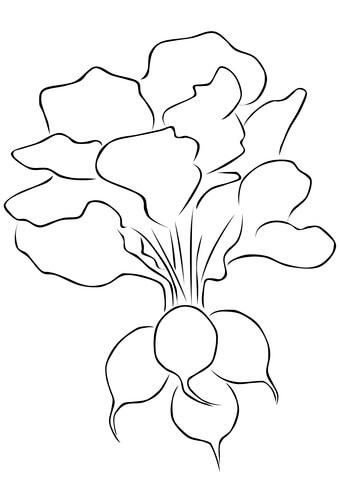 radish 10 coloring page