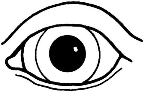 الحواس الخمس Five Senses | ZahRah's Blog