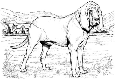 Pin Beagle Coloring Page Super Cake on Pinterest
