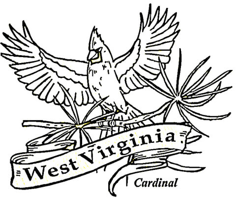 WEST VIRGINIA FLOWER COLORING PAGE « Free Coloring Pages