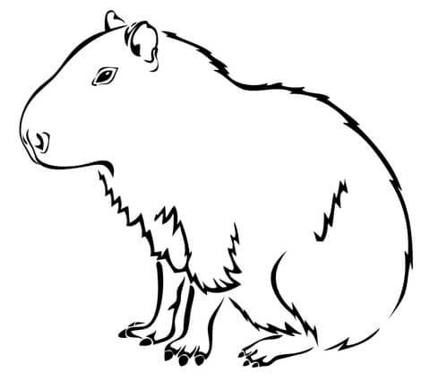 Capybara the Largest Rodent in the World coloring page