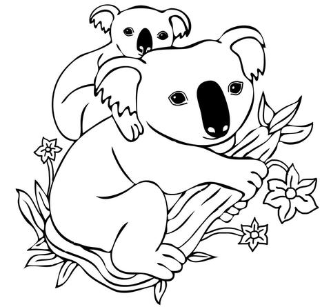 Baby Koala on Mother's Back coloring page SuperColoring
