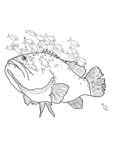 Giant Grouper Coloring Page Free Printable Coloring Pages