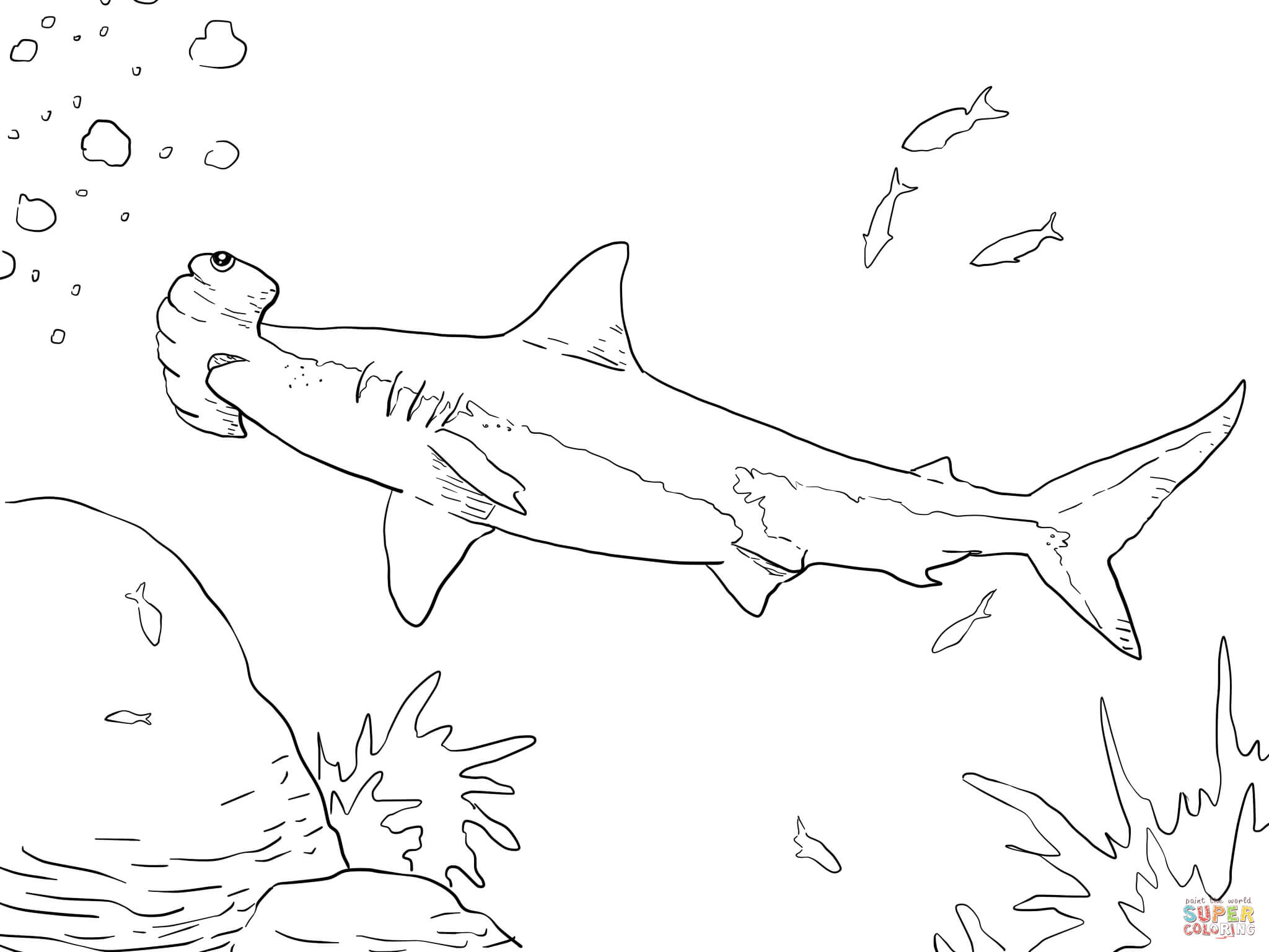 Hammerhead Shark Pictures To Print