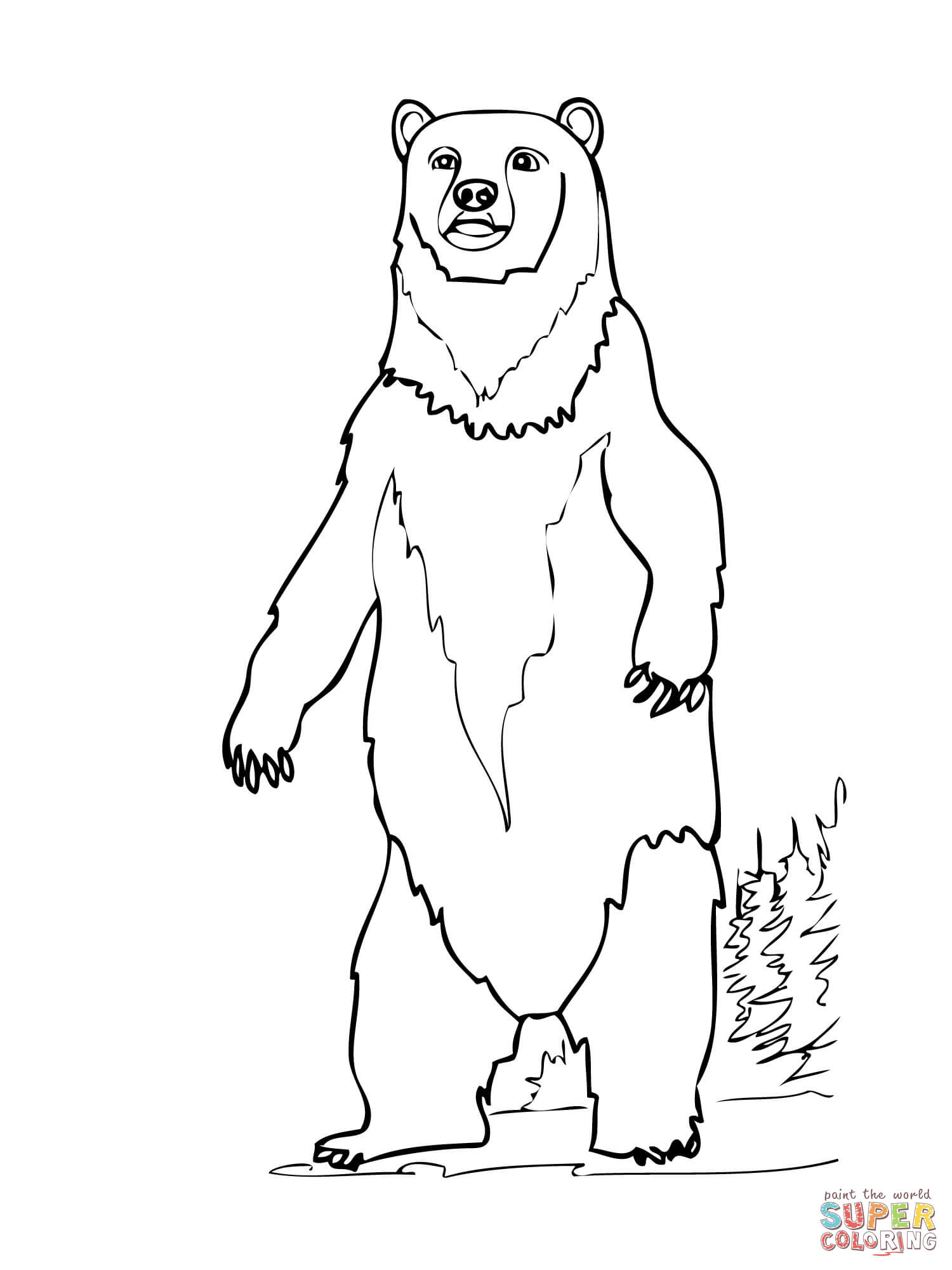 Polar Bear Standing Up Drawing