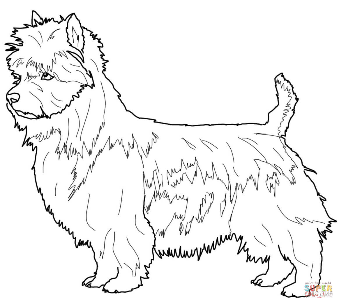 from Australian Aborigines Coloring Page Super Coloring