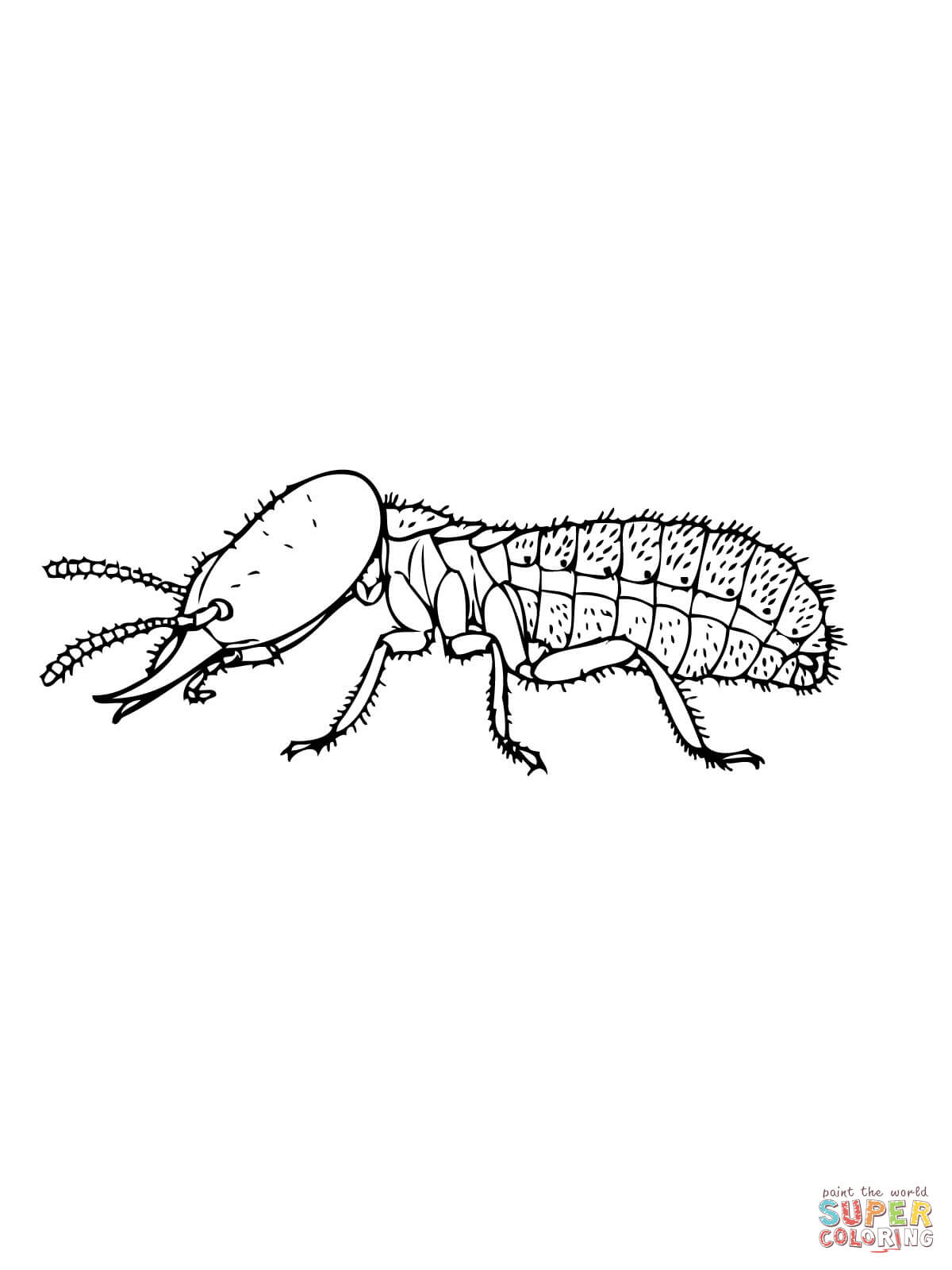 Drywood Termites: Termite Coloring Page