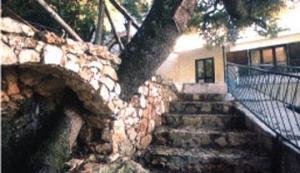 Hotel Enis Monte Maccione a OLIENA provincia di NUORO