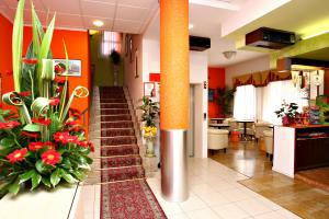 Hotel Hotel Madison a LIDO DI JESOLO provincia di VENEZIA