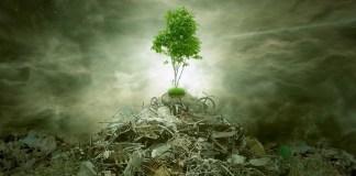 5 Passos para Praticar O Consumo Consciente