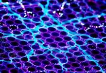 Nanotecnologia Poderá Mudar a Cor do Seu Carro
