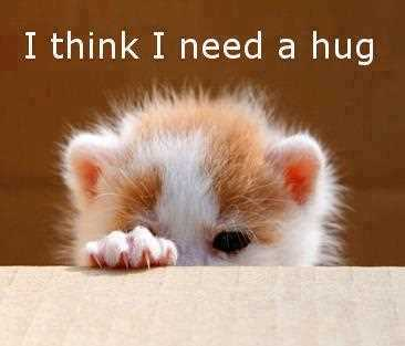 I-Think-I-Need-A-Hug-Inspirational-Life-Quotes