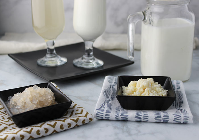 water-kefir-vs-milk-kefir-grains-benefits