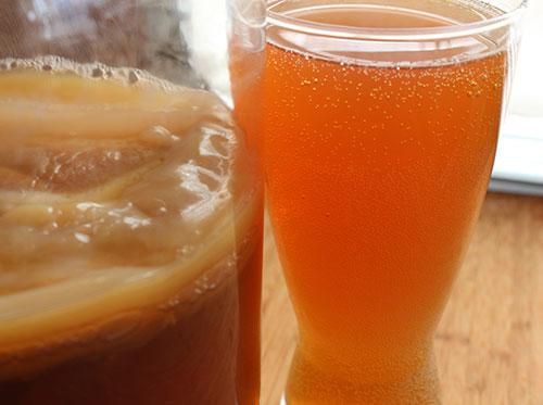 what-is-kombucha-drink