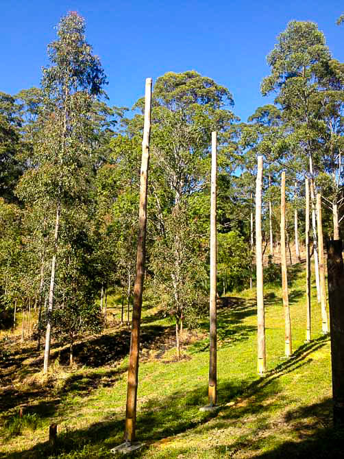 SFP small poles from thinned trees used for carport construction in Nimbin NSW.