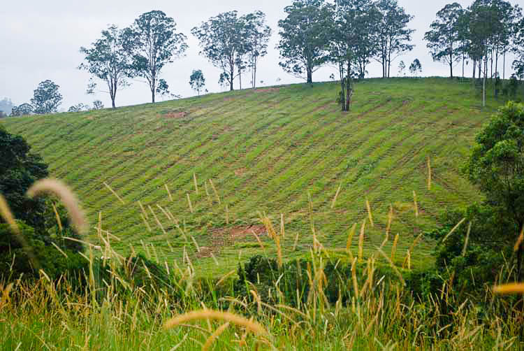 Spot cultivation across the contours (up and down the hill)