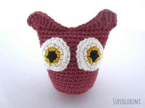 Owl Eyes Front
