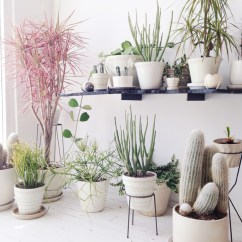 Living Room Decor With Plants Traditional 10 Beautiful Ways To Decorate Indoor Plant In Corner