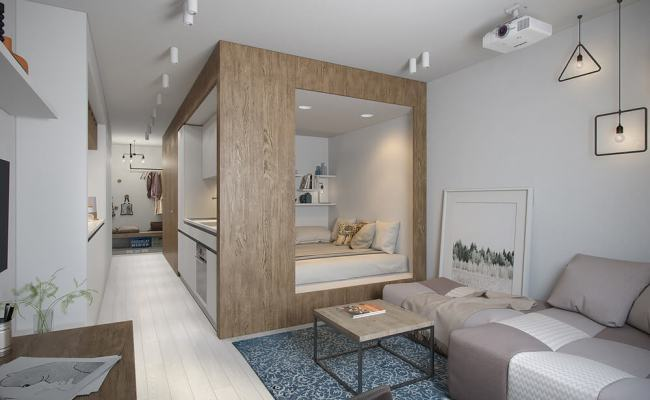 Tiny Apartment With Light Interior Design Under 30 Square