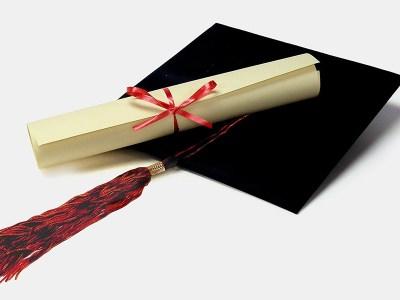 fake bachelor degree