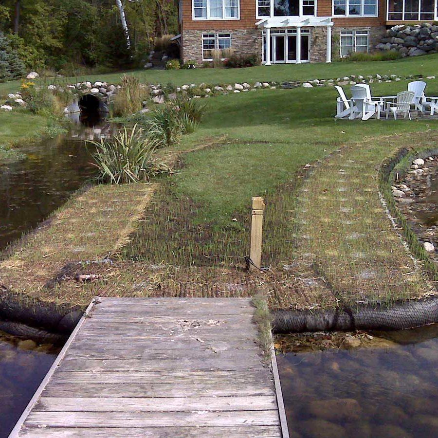 lakeshore erosion control and revegetation