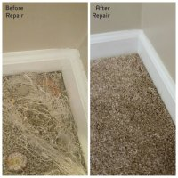 Carpet & Rug Repair Lexington KY