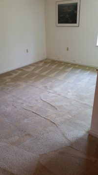 Superior Carpet Cleaning | Rug Cleaning | Oriental Rugs ...