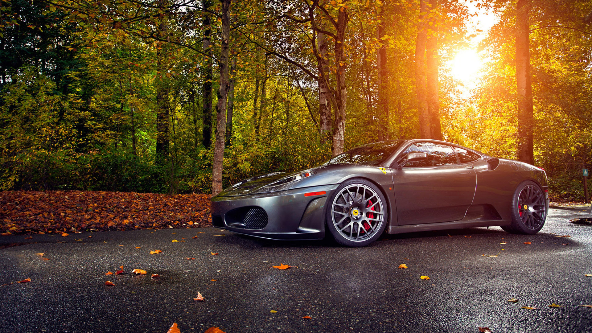 Bmw Sports Cars Wallpapers Desktop Backgrounds Gorgeous Gray Ferrari On Road In The Forest