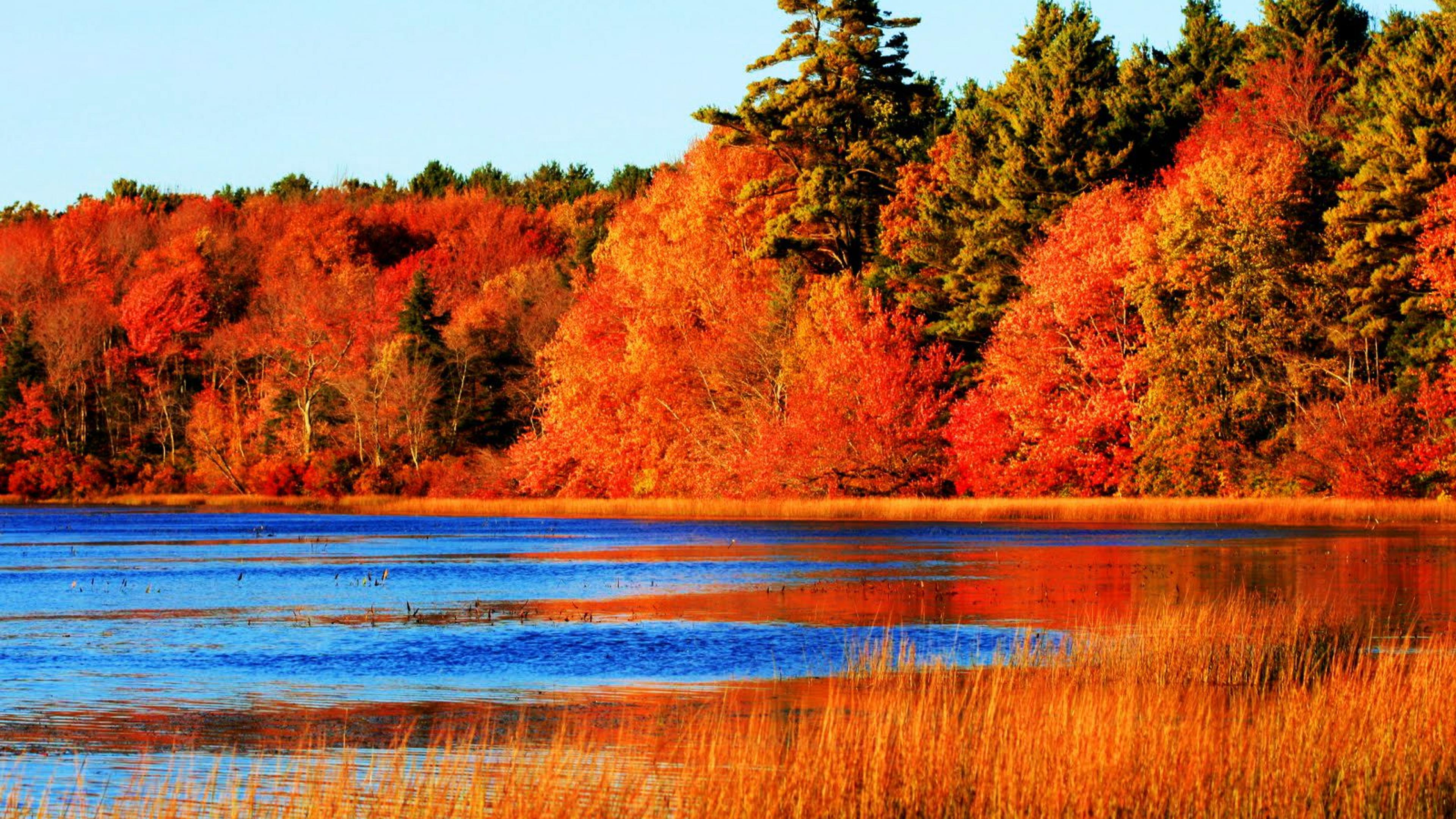 Fall Cabin Wallpaper Perfect Blue Water Contrast With Autumn Season