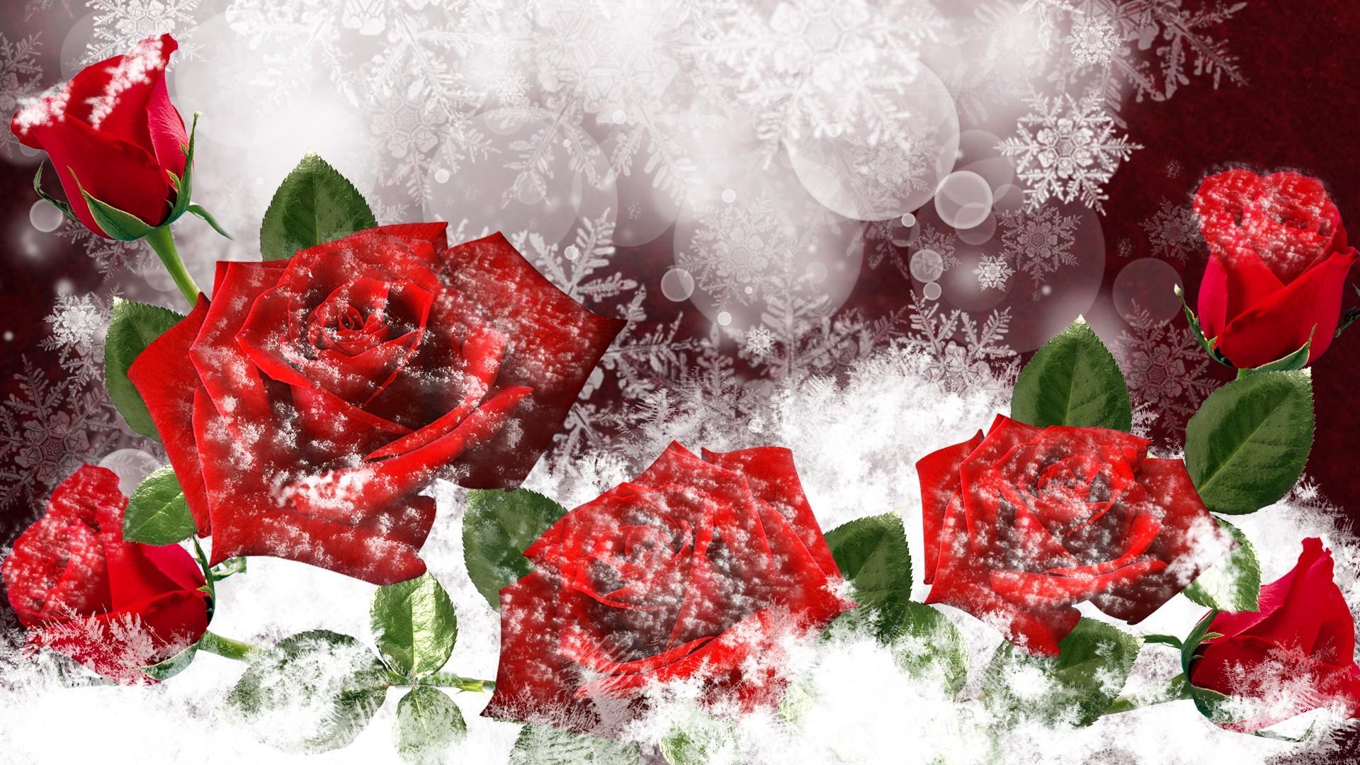 Cute Anime Vector Wallpaper Wonderful Red Frozen Roses Hd Winter Wallpaper