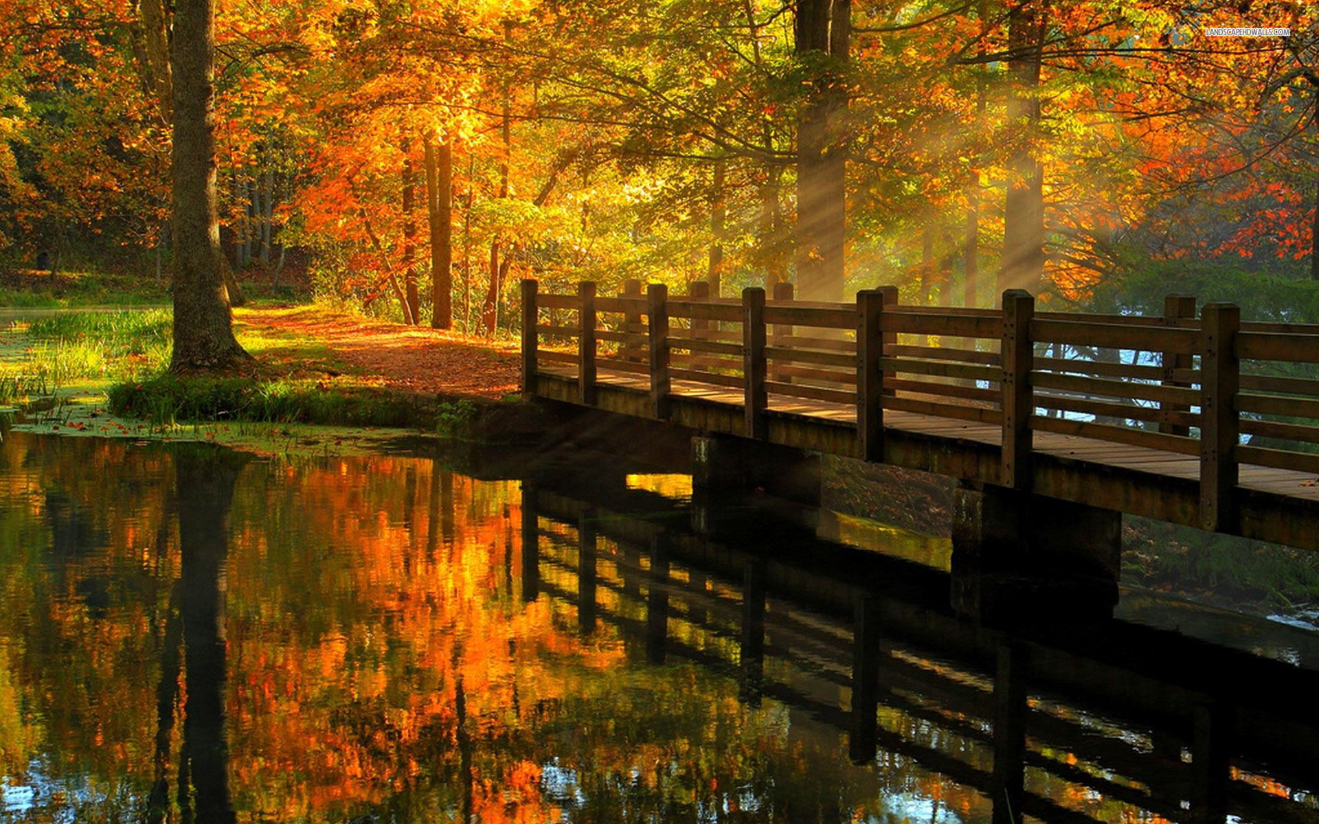Fall Themed Wallpaper Wooden Bridge Over The River Beautiful Autumn Day