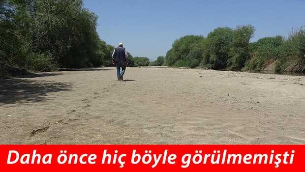 Büyük Menderes Nehri'nde vahim görüntü! Çiftçi tedirgin…