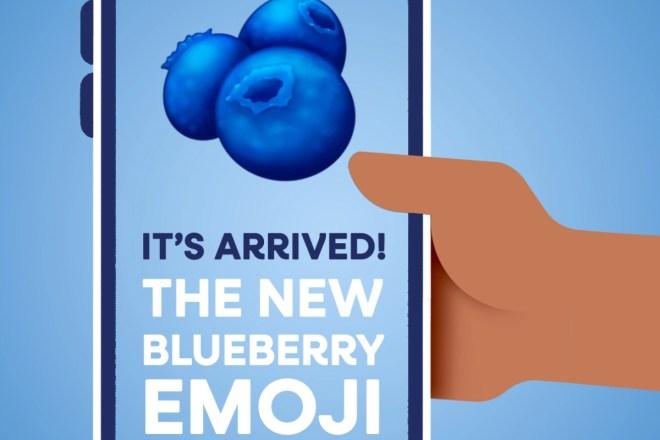 US Highbush Blueberry Council promotes new blueberry emoji as marketing  tool | 2020-11-06 | Supermarket Perimeter