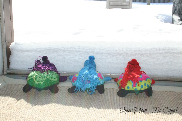 Turtle sitting in front of snowbank at the door.