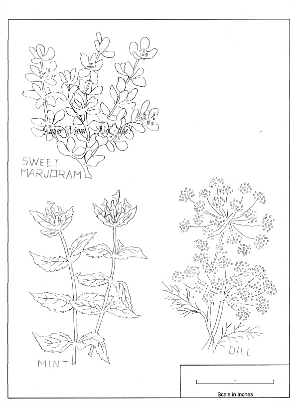 Vintage Workbasket Embroidery Pattern for mint, dill and sweet marjoram