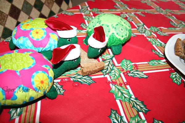 Turtles eating a cookie