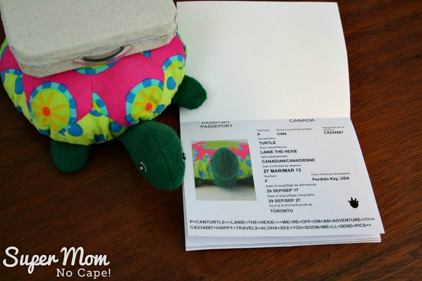 Lanie the Hexie Turtle with her passport