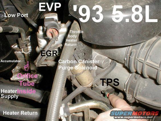 92 ford f150 wiring diagrams endocrine feedback loop diagram 302 engine | get free image about