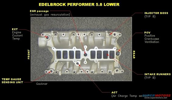 1989 Ford Bronco Ecu Wiring Diagram Eec And Engine Swap Issues Ford Bronco Forum