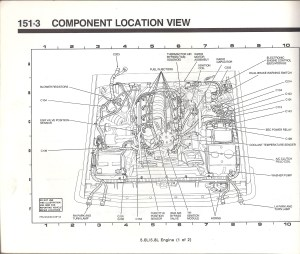 Is there a full size diagram of a Bronco?  Ford Bronco Forum