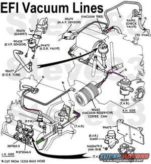 Vacuum Line RR on 1988 F150 302 50L  Ford Truck